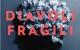 diavoli-fragili_radu gavan