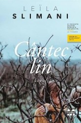 Cântec lin - Pandora M
