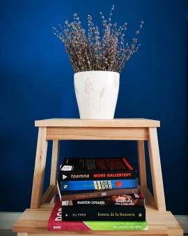Bookswap biblioteca Ion Creangă - Bookish Style